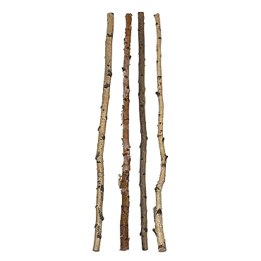 5ft Birch Pole- (Each one will vary)