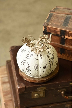 White First Frost Metal Pumpkin 7