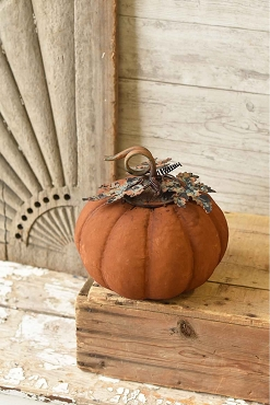 Rust Color Vine Patch Pumpkin 10